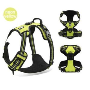 Reflective Dog Harness - Neon Yellow