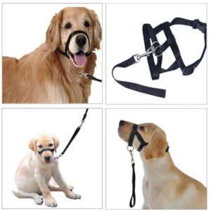 Faroot Dog Muzzle Halti Style Head Collar Stops Pulling Halter Training Reigns Leashes