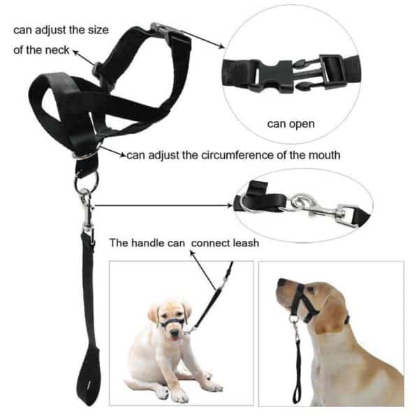 Faroot Dog Muzzle Halti Style Head Collar Stops Pulling Halter Training Reigns Leashes details