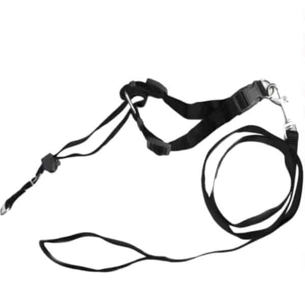 Faroot Dog Muzzle Halti Style Head Collar Stops Pulling Halter Training Reigns Leashes 2