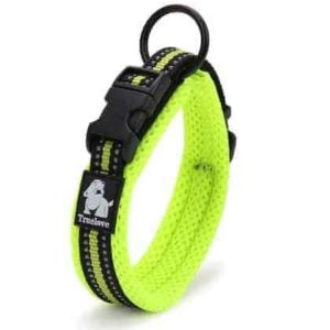 Mesh Padded Neon Yellow Dog Collar