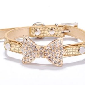 Rhinestone Bow Gold Dog Collar