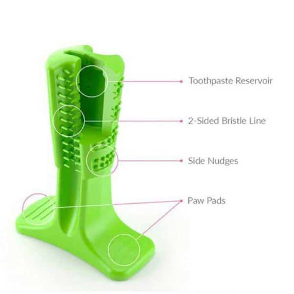 Dog Toothbrush Toy Green Details
