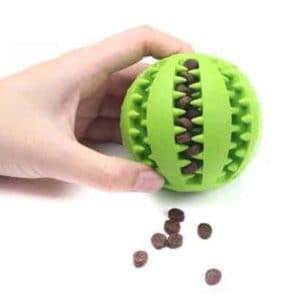 Dog Treat Feeding Ball Toy Green