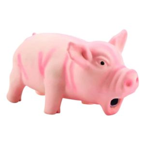 Grunting Pig Dog Toy Front